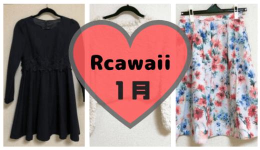 Rcawaiiで2018年1月に借りた服。スカート風パンツが意外といける
