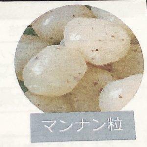 植物性マンナン粒(グルコマンナン)