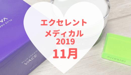 【エクセレントメディカルビューティーボックス2019年月】