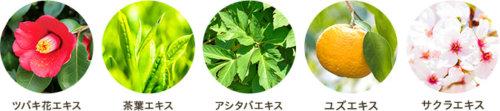 hugm ナチュラルシャンプーの植物成分