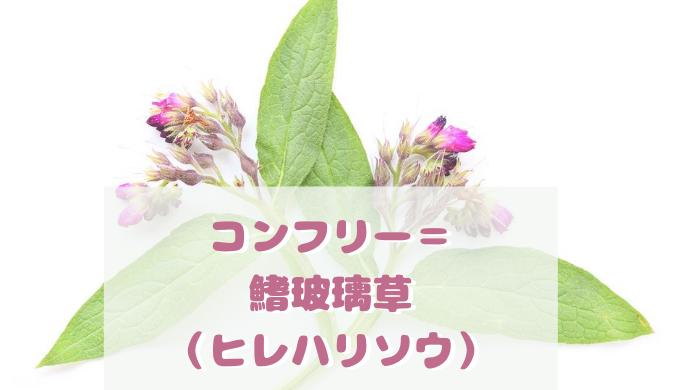 コンフリー= 鰭玻璃草 (ヒレハリソウ)